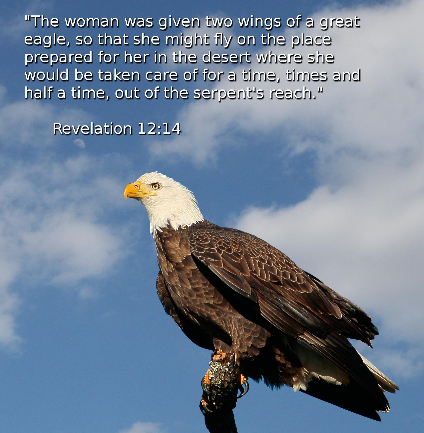 Tennyson the eagle