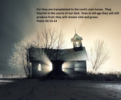 psalm-92-13-14