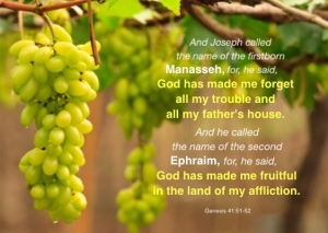 Genesis-41-51-52-And-Joseph-called-the-name-of-the-firstborn-Manasseh-for-he-said-God-has-made-me-forget-all-my-trouble-and-all-my-fathers-house.-And-he-called-the-name-of-the-second-Ephraim