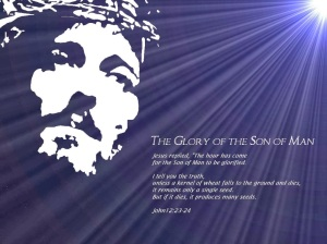glory-of-the-son-of-god_406_1024x768