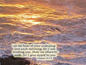 psalm_143_8