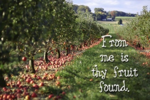 Consider the kind of extravagant love the Father has lavished on us—He calls us children of God! It's true; we are His beloved children. And in the same way the world didn't recognize Him, the world does not recognize us either. When we feel like we are not good enough to be loved by God, we should remember that God's love is greater than our doubts. We must silence the sounds of condemnation so we can hear the voice of God's loving assurance and remember that He has selected us to be part of His family. My loved ones, we have been adopted into God's family; and we are officially His children now. The full picture of our destiny is not yet clear, but we know this much: when Jesus appears, we will be like Him because we will see Him just as He is.  All those who focus their hopes on Him and His coming seek to purify themselves just as He is pure. Everyone who lives a life of habitual sin is living in moral anarchy. That's what sin is.  You realize that He came to eradicate sins, that there is not the slightest bit of sin in Him. The ones who live in an intimate relationship with Him do not persist in sin, but anyone who persists in sin has not seen and does not know the real Jesus.