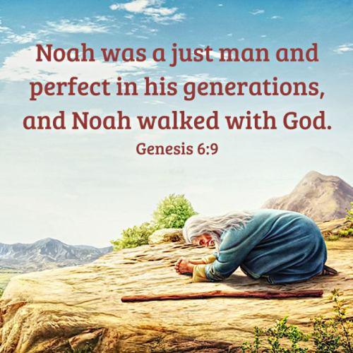 Bible-Quote-Genesis-6-9